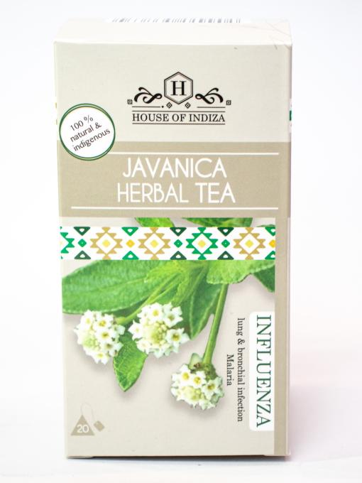 javanica tea